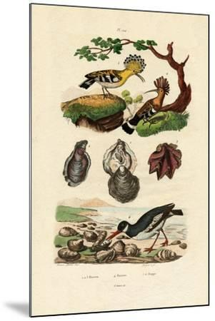Oysters, 1833-39--Mounted Giclee Print