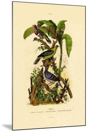 Pigeons, 1833-39--Mounted Giclee Print