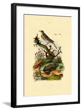 Pipa, 1833-39--Framed Giclee Print