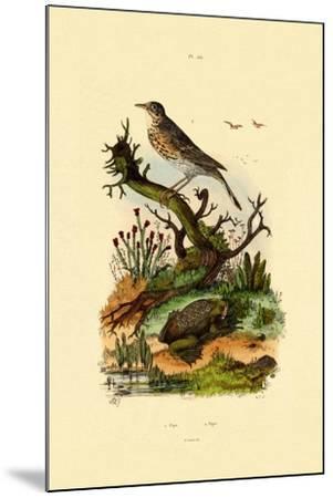 Pipa, 1833-39--Mounted Giclee Print