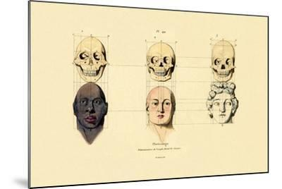 Phrenology, 1833-39--Mounted Giclee Print