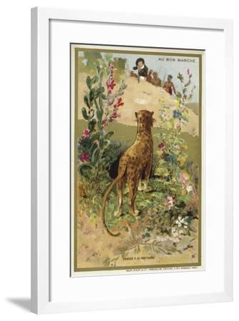 Hunting a Panther--Framed Giclee Print
