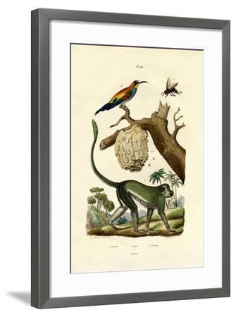 Guenon, 1833-39--Framed Giclee Print