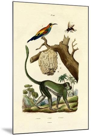 Guenon, 1833-39--Mounted Giclee Print