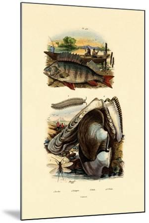 Perch, 1833-39--Mounted Giclee Print