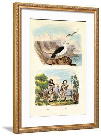 Albatros, 1833-39--Framed Giclee Print