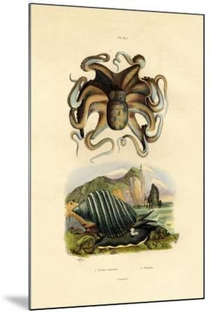 Octopus, 1833-39--Mounted Giclee Print