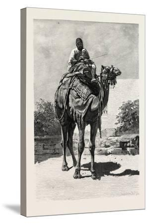 Camel Rider, Egypt, 1879--Stretched Canvas Print