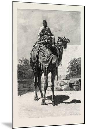 Camel Rider, Egypt, 1879--Mounted Giclee Print