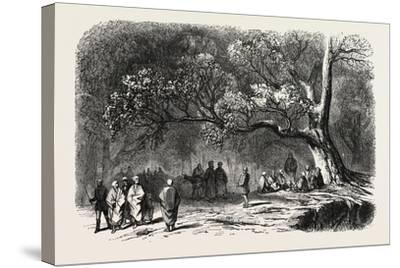 The Kief in the Islands of Princes, 1855--Stretched Canvas Print