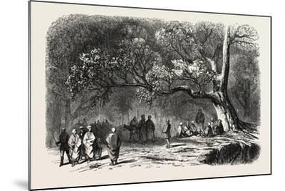 The Kief in the Islands of Princes, 1855--Mounted Giclee Print