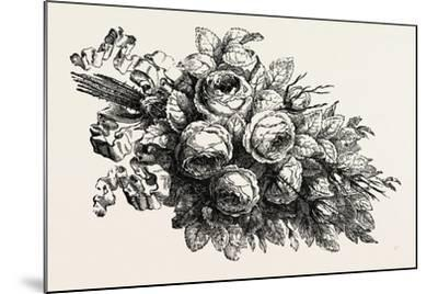 Flowers, 19th Century--Mounted Giclee Print