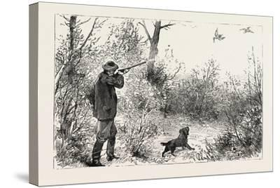 Woodcock Shooting, 1884--Stretched Canvas Print