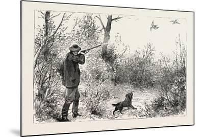 Woodcock Shooting, 1884--Mounted Giclee Print