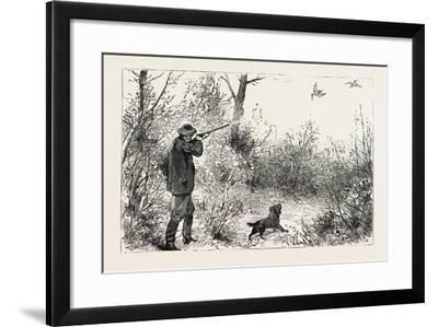 Woodcock Shooting, 1884--Framed Giclee Print