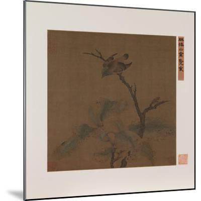 Bird on a Branch--Mounted Giclee Print