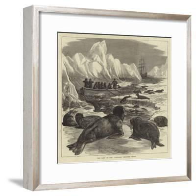The Crew of the Pandora Shooting Seals--Framed Giclee Print
