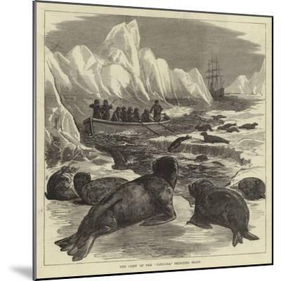 The Crew of the Pandora Shooting Seals--Mounted Giclee Print