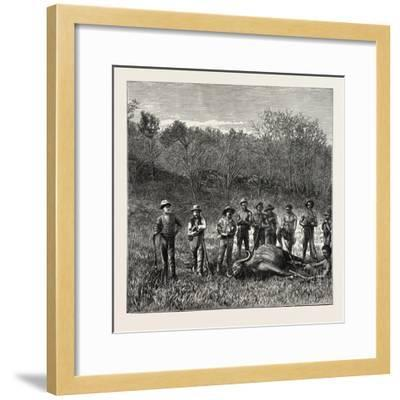 A Bullock Carriage in Cochin-China--Framed Giclee Print
