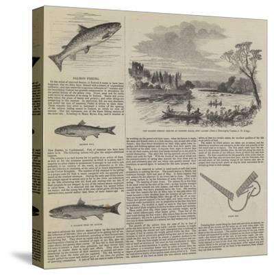 Salmon Fishing--Stretched Canvas Print