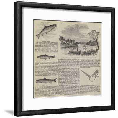 Salmon Fishing--Framed Giclee Print