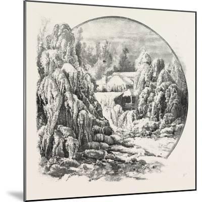 Ice Grove, Canada, Nineteenth Century--Mounted Giclee Print