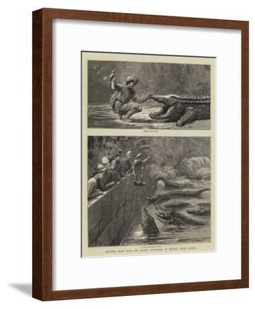 Sketches from India, the Sacred Alligators at Muggur Talao, Scinde--Framed Giclee Print