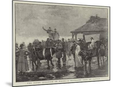 The Tithe Question in Wales, a Distraint Sale of Cattle--Mounted Giclee Print