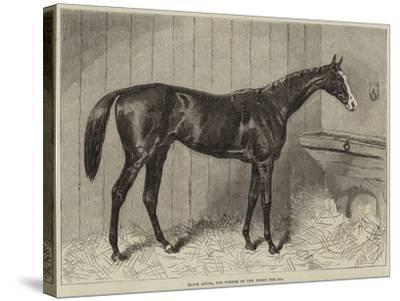 Blair Athol, the Winner of the Derby for 1864--Stretched Canvas Print