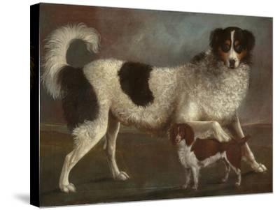 Newfoundland and Spaniel in a Coastal Landscape--Stretched Canvas Print