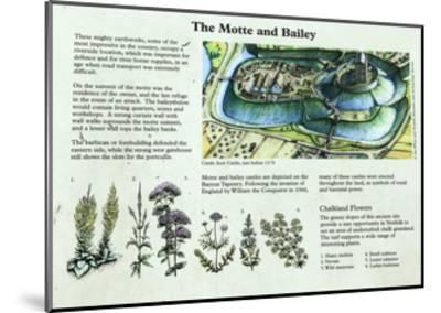 Castle Acre Castle Information Panel, Norfolk--Mounted Giclee Print
