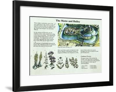 Castle Acre Castle Information Panel, Norfolk--Framed Giclee Print