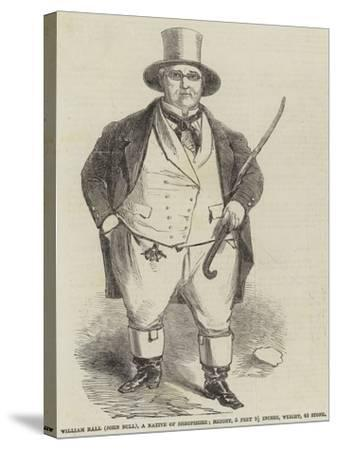William Ball (John Bull), a Native of Shropshire--Stretched Canvas Print