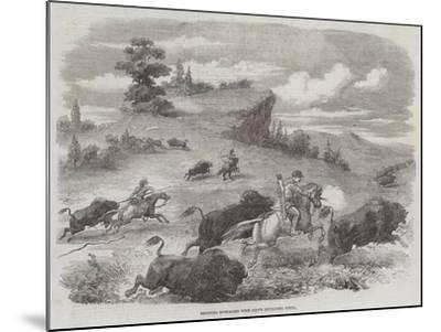 Shooting Buffaloes with Colt's Revolving Pistol--Mounted Giclee Print