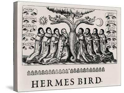The Hermes Bird, from 'Theatrum Chemicum', 1652--Stretched Canvas Print
