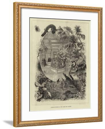 Summer-In-Winter at the Jardin Des Plantes--Framed Giclee Print