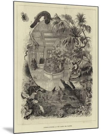 Summer-In-Winter at the Jardin Des Plantes--Mounted Giclee Print