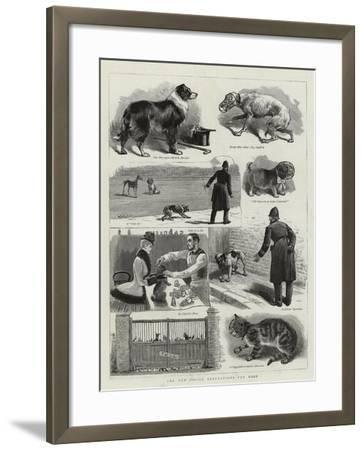 The New Police Regulations for Dogs--Framed Giclee Print