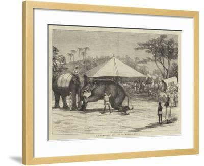 An Elephant Auction in Mysore, India--Framed Giclee Print