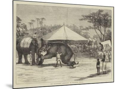 An Elephant Auction in Mysore, India--Mounted Giclee Print