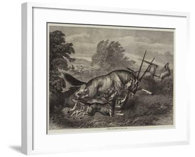 Hunting the Gemsbok in South Africa--Framed Giclee Print