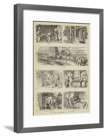The Wool Industry in Australia--Framed Giclee Print