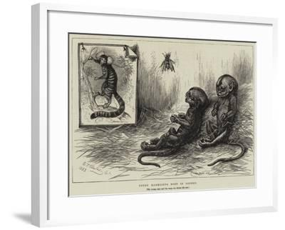 Young Marmozets Born in London--Framed Giclee Print