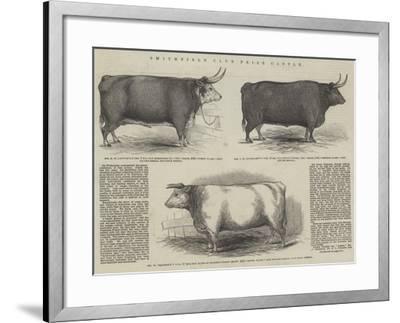 Smithfield Club Prize Cattle--Framed Giclee Print