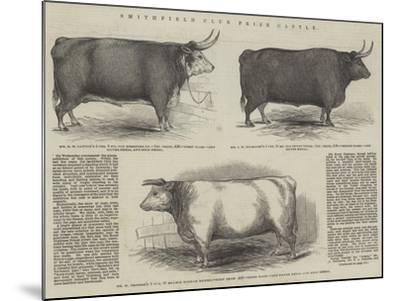 Smithfield Club Prize Cattle--Mounted Giclee Print