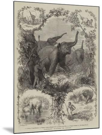 Elephant Hunting in Ceylon--Mounted Giclee Print