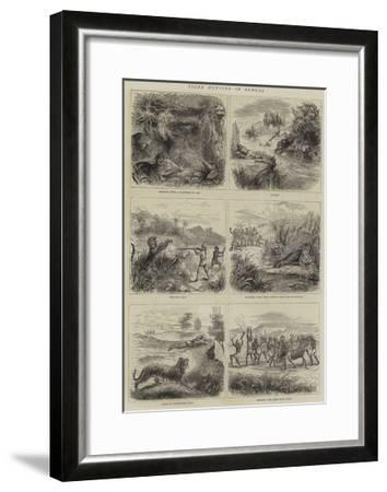 Tiger Hunting in Bengal--Framed Giclee Print