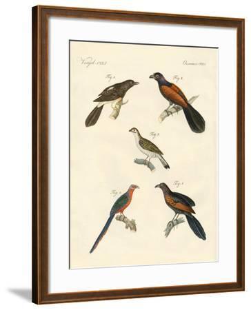 Beautiful Climbing Birds--Framed Giclee Print
