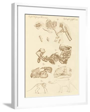 Strange Fossils of Four-Footed Animals--Framed Giclee Print