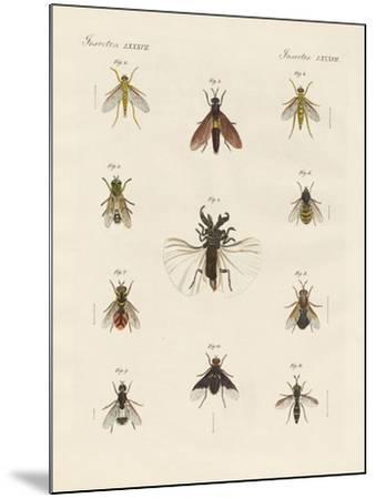 Strange Two-Winged Insects--Mounted Giclee Print